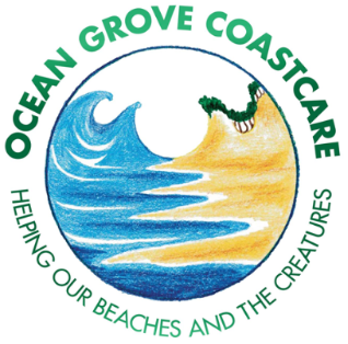 Ocean Grove Coast Care